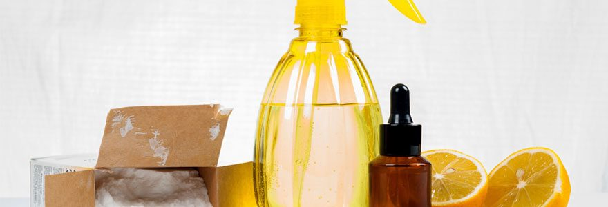 Utilisation des solvants : opter pour un produit écologique